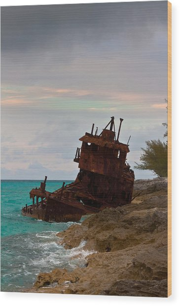 Gallant Lady Aground Wood Print