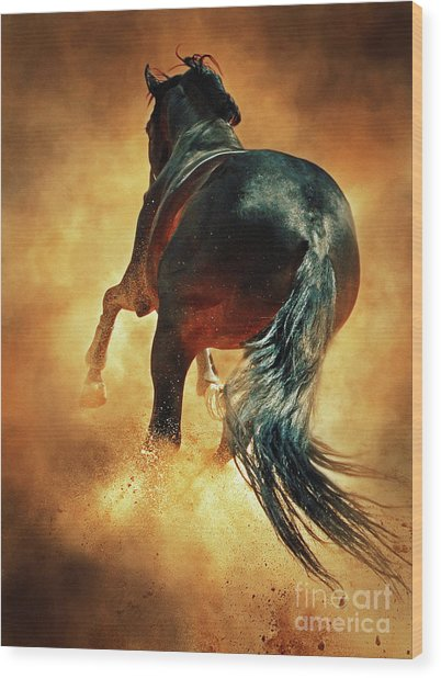 Galloping Horse In Fire Dust Wood Print