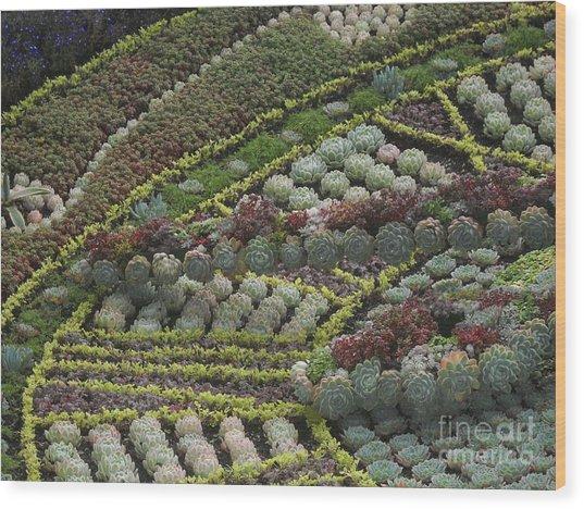 Garden 4 Wood Print