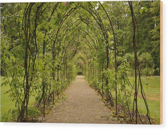 Garden Archway Wood Print