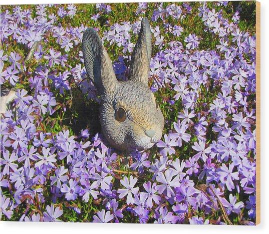 Garden Bunny Wood Print