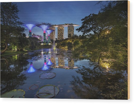 Garden By The Bay, Singapore Wood Print