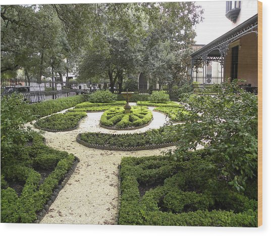 Garden Design Wood Print by Kim Zwick
