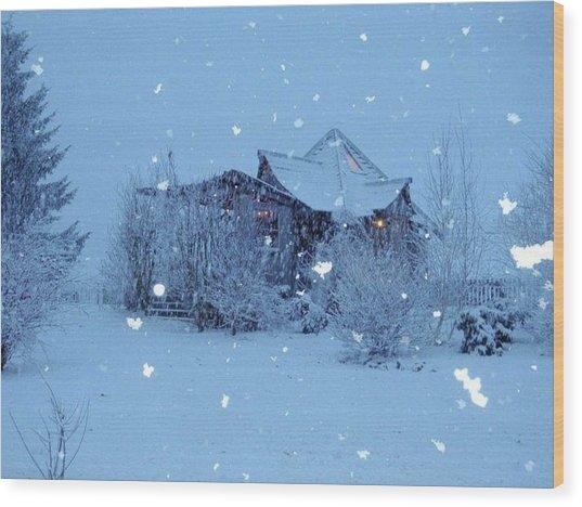 Garden Gallery, Winter 2010 Wood Print by Leizel Grant