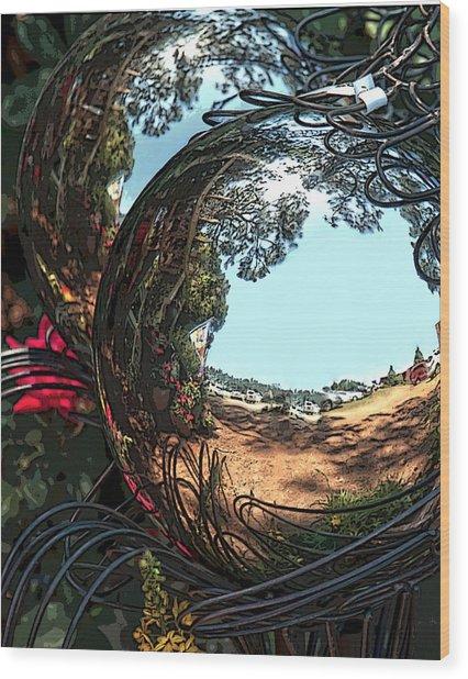 Garden Globe Wood Print