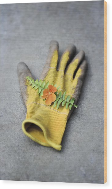 Garden Glove And Pansy Blossom2 Wood Print