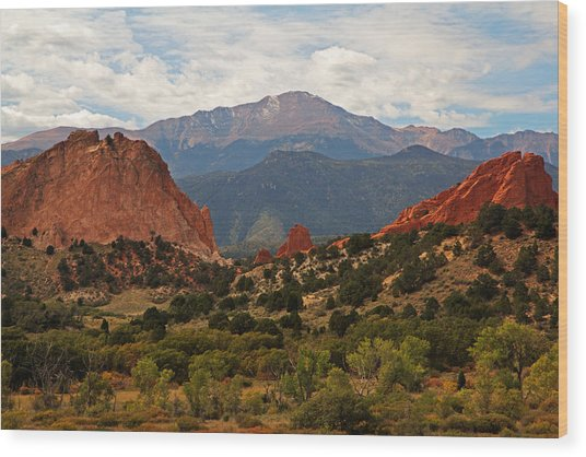 Garden Of The Gods Wood Print