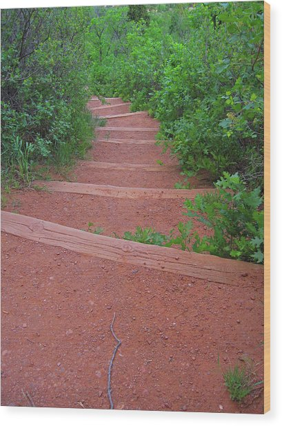 Garden Of The Gods Steps Wood Print