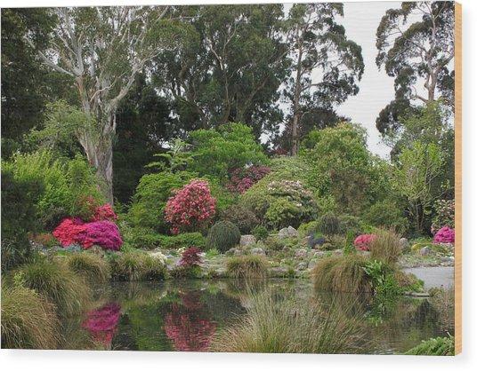 Garden Reflection Wood Print