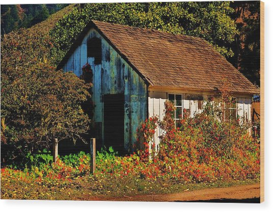 Garden Shed Wood Print by Helen Carson
