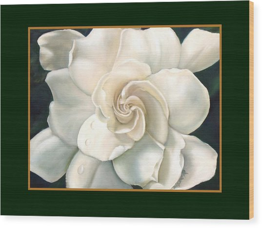 Gardenia Wood Print by Darlene Green