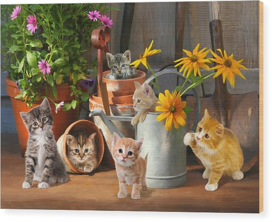 Gardening Kittens Wood Print