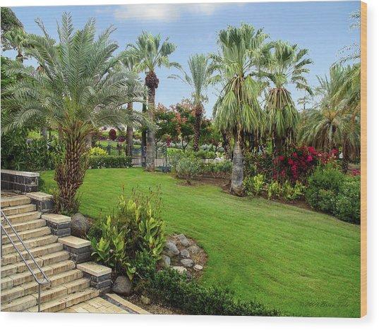 Gardens At Mount Of Beatitudes Israel Wood Print