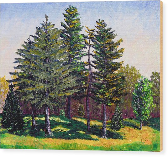 Garfield Trees Wood Print by Stan Hamilton
