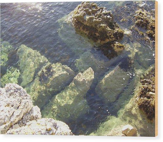 Garron Point Rock Pool Wood Print