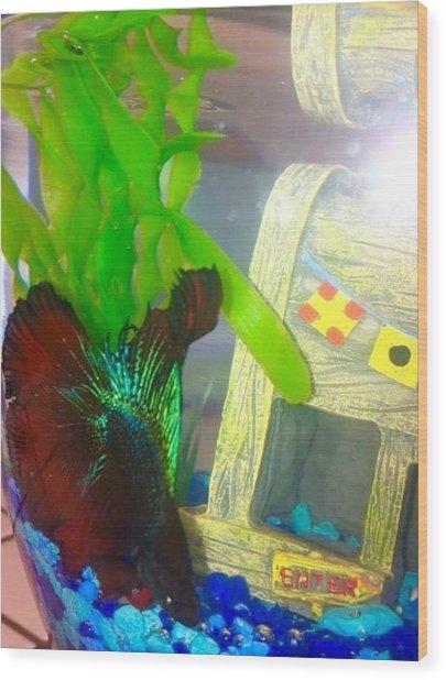 Gary Hanging Loose Wood Print