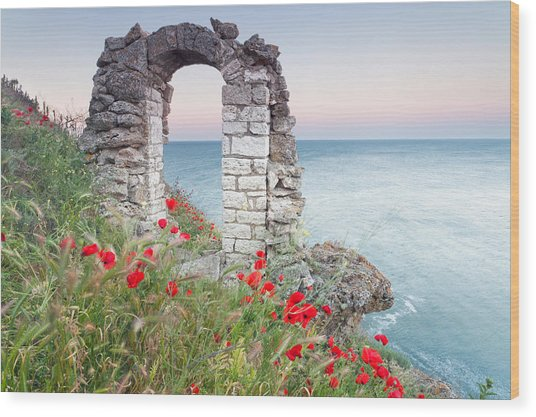 Gate In The Poppies Wood Print