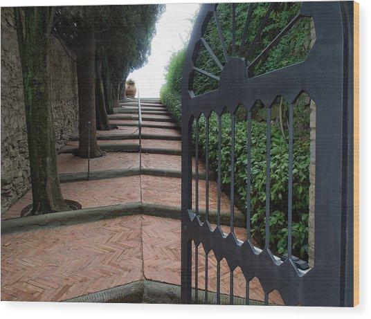 Gate To Castello Vichiamaggio Wood Print