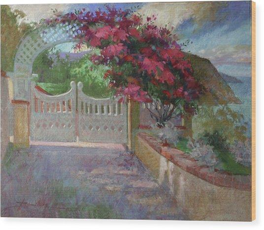 Gateway Splendor - Catalina Island Wood Print