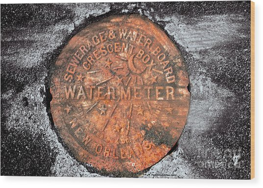New Orleans Water Meter Cover 9 Months After Katrina Wood Print by Pringle Teetor