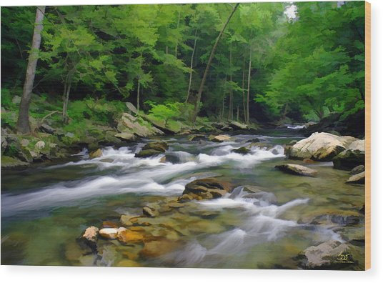 Gatlinburg Stream Wood Print