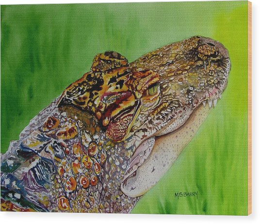 Gator Ali Wood Print by Maria Barry