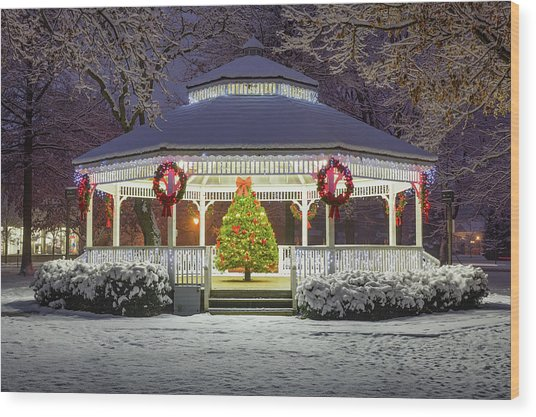 Gazebo In Beaver Pa Wood Print