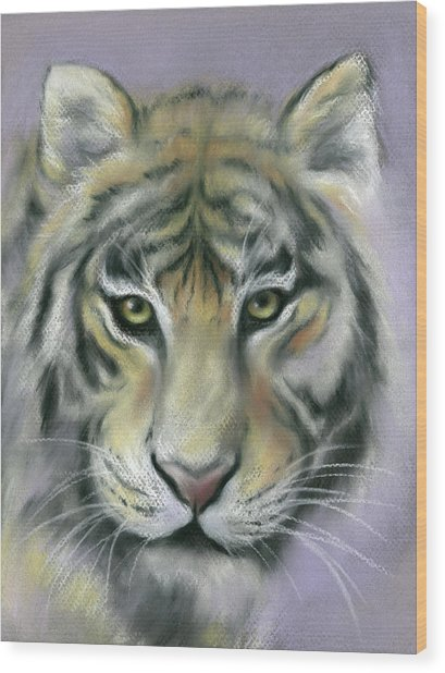 Gazing Tiger Wood Print