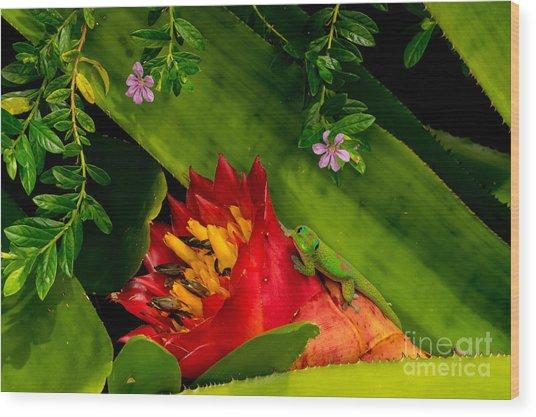 Gecko Aloha All Proceeds Go To Hospice Of The Calumet Area Wood Print