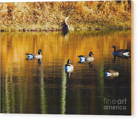 Geese On Lake Wood Print