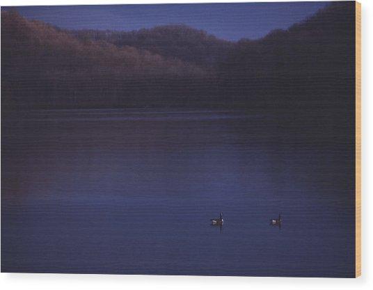 Geese On Radnor Lake Wood Print by Randy Muir