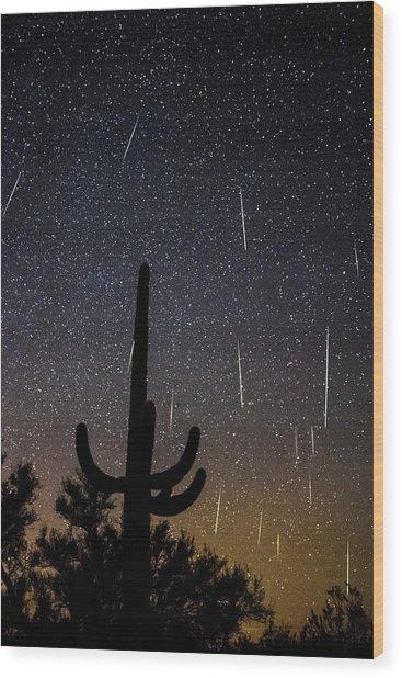 Geminid Meteor Shower #2, 2017 Wood Print