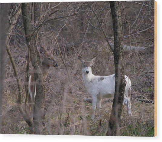 Genetic Mutant Deer Wood Print