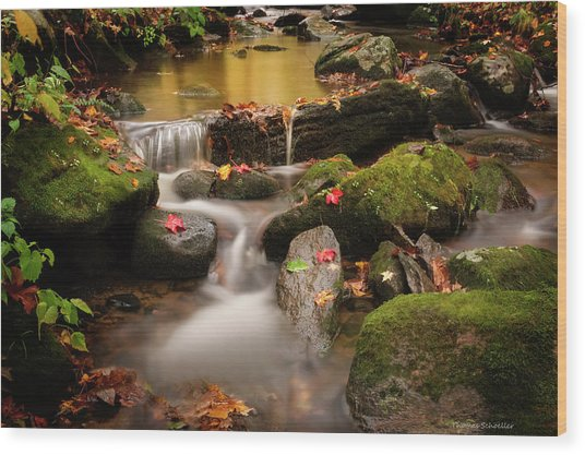 Gentle Cascades Of Autumn  Wood Print