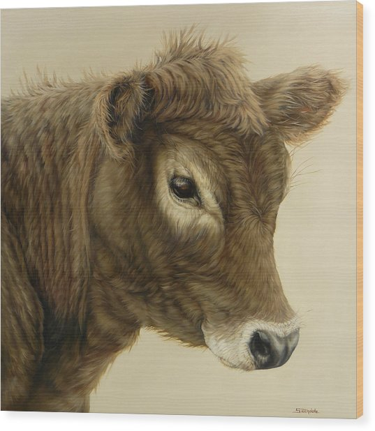 Gentle Swiss Calf Wood Print
