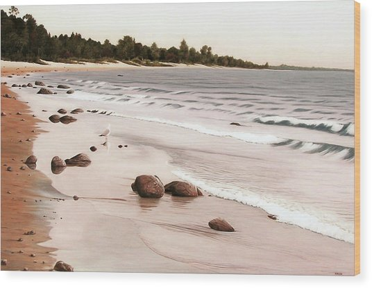 Georgian Bay Beach Wood Print