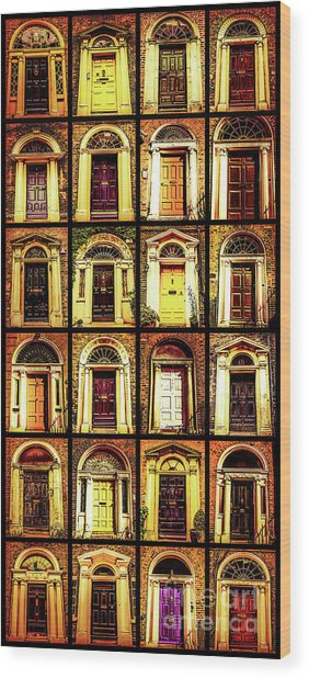 Georgian Doors Of Dublin 4 Wood Print