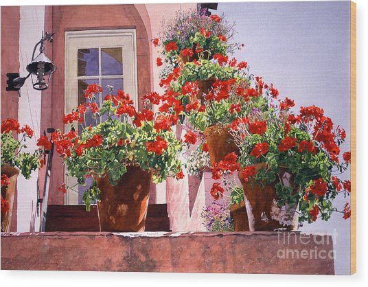 Geraniums At The Top Of Stairs Wood Print by David Lloyd Glover