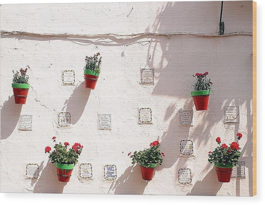 Geraniums Ganging Up Wood Print by Jez C Self