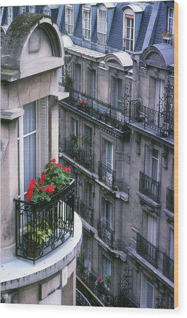 Geraniums - Paris Wood Print