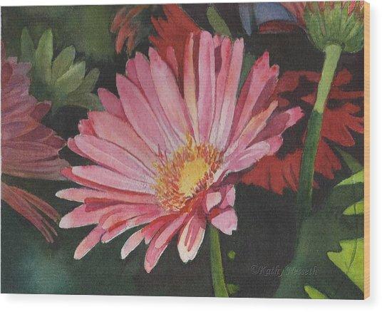 Gerbera Daisy Wood Print by Kathy Nesseth