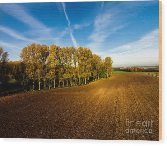 Fields From Above Wood Print