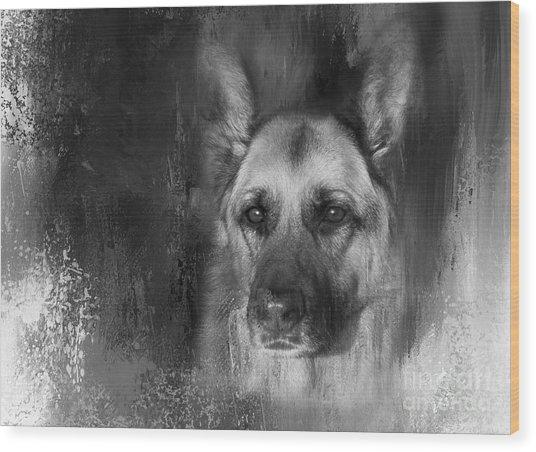 German Shepherd In Black And White Wood Print
