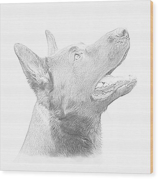 German Shepherd Profile Wood Print by Christean Ramage