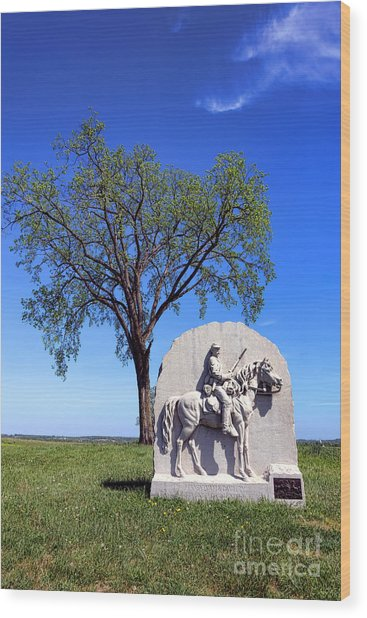 Gettysburg National Park 17th Pennsylvania Cavalry Memorial Wood Print