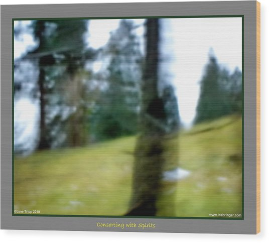 Ghost Behind Tree Wood Print by Jane Tripp
