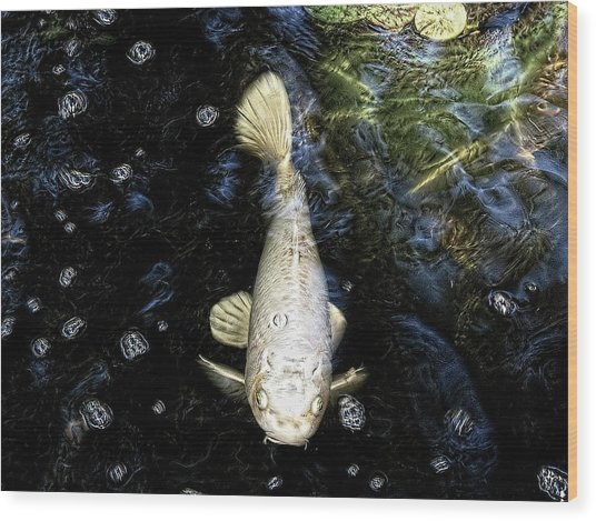 Ghost Fish Wood Print