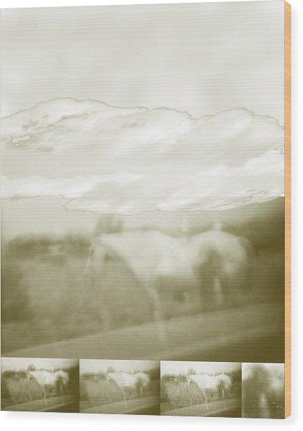 Ghost Horse Colorado Wood Print