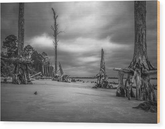Ghosts Of Giants Above The Sand - Bw Wood Print