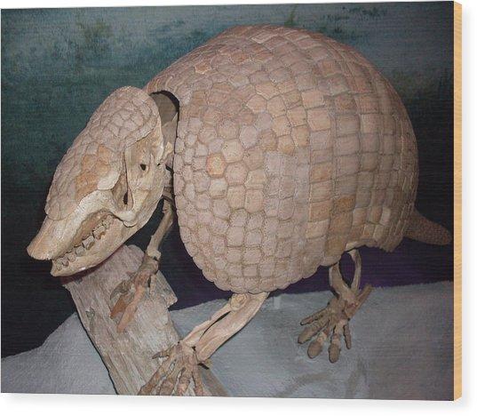 Giant Armadillo 2 Wood Print by Warren Thompson